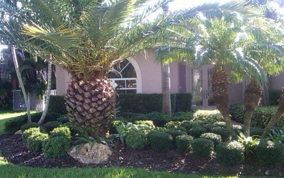 Garden Landscape Design Broward South Florida Home